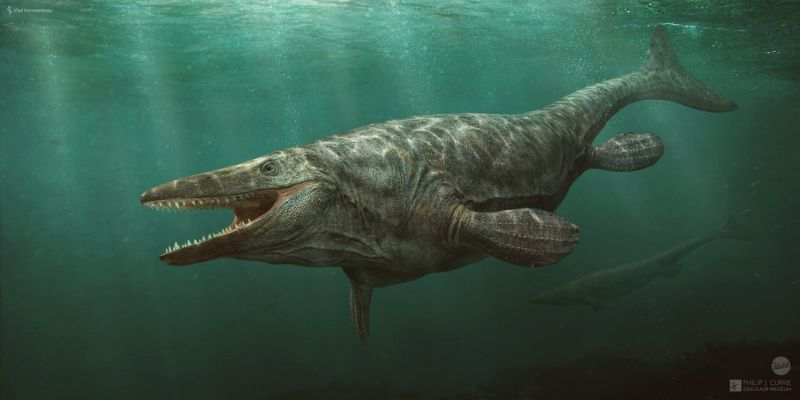 Картинки по запросу Тилозавры