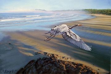 Morning Fight-blue Heron