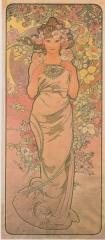 Цветы. Роза-1898