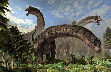 Dreadnoughtus schrani, feature cover