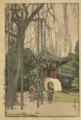 The cherry tree in Kawagoe
