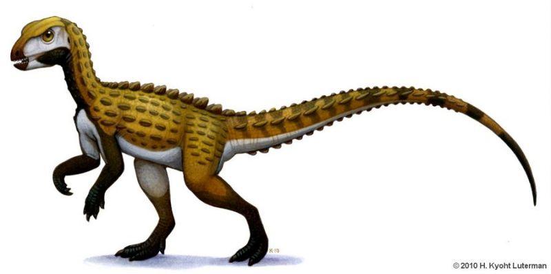 Картинки по запросу Скутеллозавр