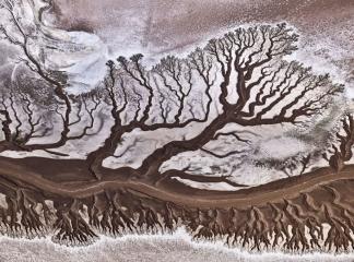 Народный выбор, Природа: 'Colorado River', автор: Stas Bartnikas